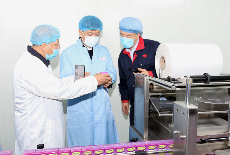 河北省商务厅领导到ballbet体育ballbet手机版进行出口业务调研